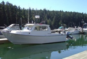Hardtop fishing boat