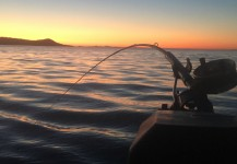 We use some of the best fishing gear around