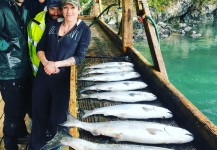 A row of pacific salmon caught on our charter